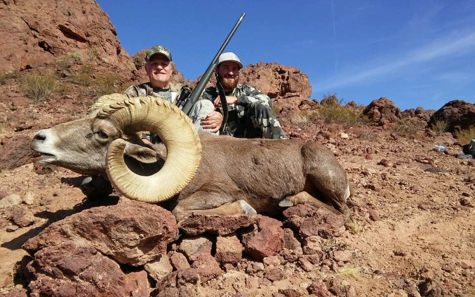 Nelson Bighorn Sheep after 4 days of hard hunting in Nevada Unit 267.